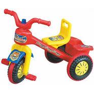 Dream Trike Tricycle