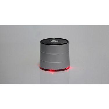 Callmate Bluetooth Wireless Mini Speaker A1022 with MIC, FM Radio & TF Card Support - Silver