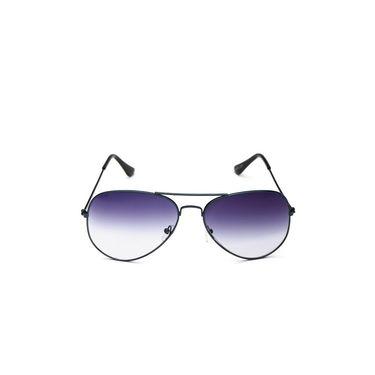 Alee Metal Oval Unisex Sunglasses_125 - Blue