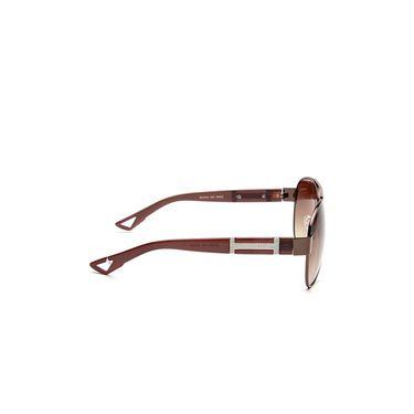 Alee Metal Oval Unisex Sunglasses_140 - Brown