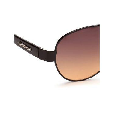 Alee Metal Oval Unisex Sunglasses_177 - Brown
