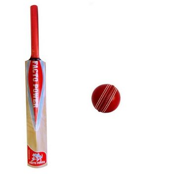 Facto Power All Cane Handle Cricket Bat + Four Piece Leather Ball