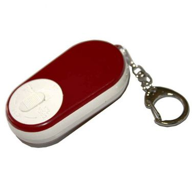 Key Chain with Magnifier & Torch