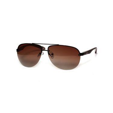 Mayhem Men Brown Sunglasses_1036203