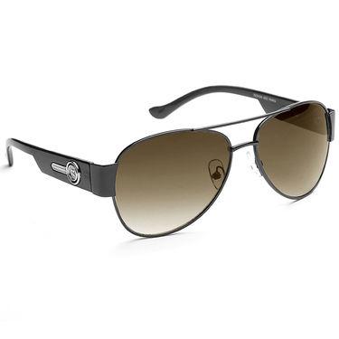 Alee Metal Oval Unisex Sunglasses_166 - Brown