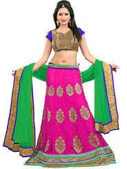 Styles Closet Designer Net Semi Stitched Lehenga Choli -Bnd-Pc5006