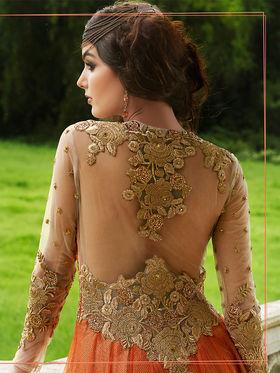 Viva N Diva Net Embroidered Semi Stitched Suit 10154-Lavish