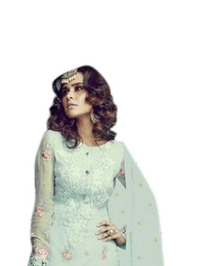Thankar Semi Stitched  Georgette Embroidery Dress Material Tas282-2153